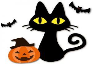 ハロウィン イラスト 黒猫