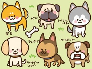 年賀状 犬 イラスト 可愛い