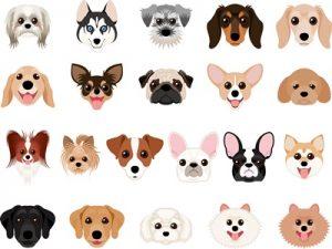 年賀状 イラスト 犬 顔 可愛い