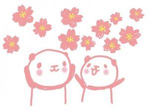 お花見 イラスト パンダ 桜 無料 フリー