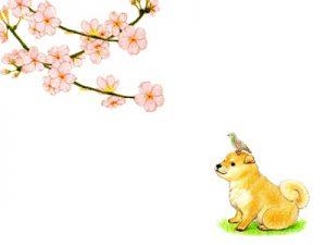 お花見 犬 イラスト 無料 フリー