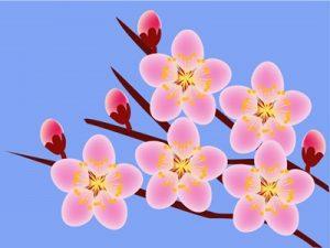 梅の花 イラスト 綺麗 無料 フリー