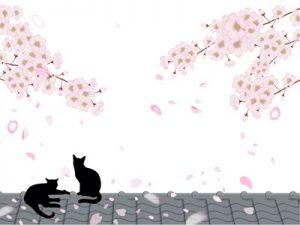 桜 動物 猫 イラスト 無料 フリー