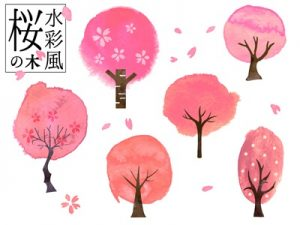 お花見 桜の木 イラスト かわいい 無料 フリー
