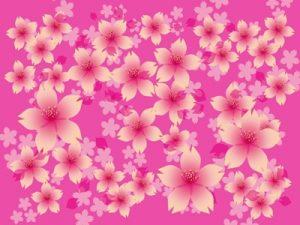 お花見 桜 イラスト おしゃれ フレーム 背景 無料 フリー素材