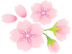 桜の花びら イラスト 無料 フリー