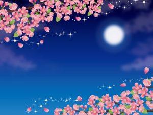 お花見 桜 背景 可愛い 無料 フリー素材