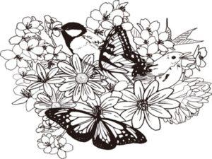 花 蝶 イラスト 白黒 塗り絵 線画 背景 無料 フリー