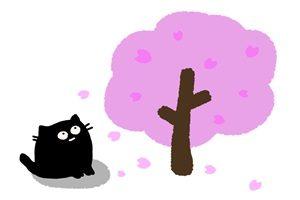 春 イラスト 猫 桜 かわいい 無料 フリー