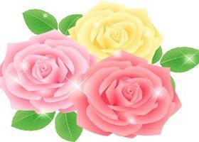 バラ 薔薇 イラスト 無料 フリー