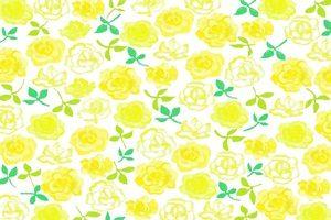 薔薇 バラ 黄色 イラスト 背景 壁紙 無料 フリー