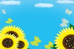 ひまわり 蝶 イラスト 無料 フリー