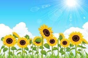 ひまわり 太陽 イラスト 無料 フリー