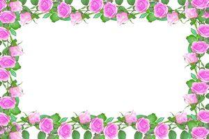 バラ イラスト フレーム ピンク 無料 フリー
