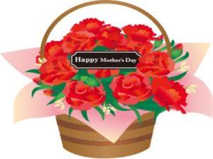 カーネーション 母の日 鉢植え イラスト 無料 フリー