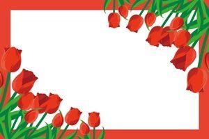 チューリップ 赤 イラスト フレーム 無料 フリー