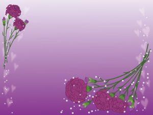 カーネーション 紫 イラスト 背景 無料 フリー
