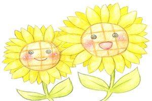 ひまわり 向日葵 イラスト 手描き 手書き 色鉛筆 無料 フリー