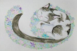 猫 イラスト 手描き 手書き 線画 無料 フリー