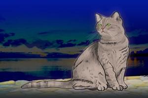 猫 イラスト かっこいい クール 無料 フリー