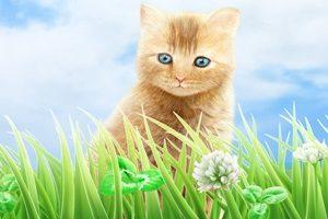 猫 イラスト リアル 手書き 手描き 無料 フリー