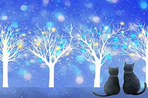 黒猫 イラスト 背景 壁紙 冬 無料 フリー