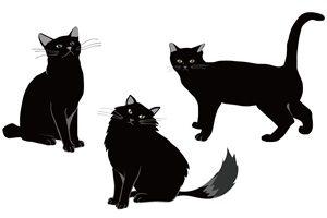 黒猫 イラスト クール 無料 フリー