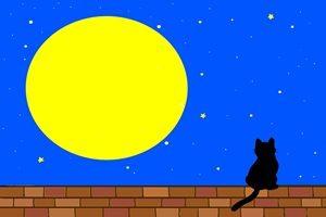黒猫 イラスト 壁紙 背景 クール かっこいい 無料 フリー