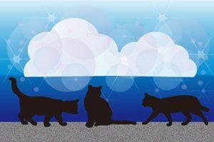黒猫 イラスト 背景 壁紙 無料 フリー