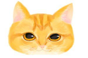 猫 イラスト 手描き 手書き 無料 フリー