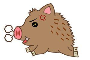 年賀状 イノシシ 猪突猛進 イラスト 無料 フリー