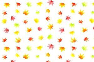 もみじ イラスト カラーシルエット パターン 背景 壁紙 無料 フリー