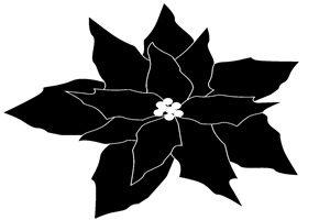 ポインセチア イラスト 白黒