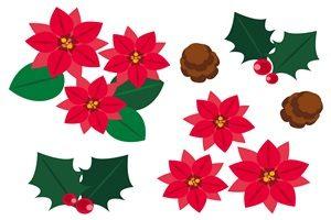 ポインセチア イラスト クリスマス 素材 松ぼっくり 無料 フリー