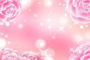 椿 乙女椿 イラスト 背景 壁紙 無料 商用フリー