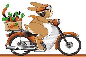 うさぎ イラスト バイク かっこいい 無料 商用フリー