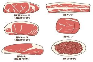 豚肉のイラスト