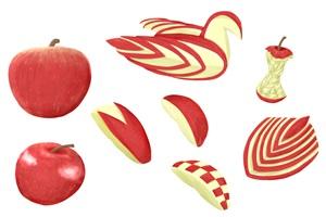 カットしたりんごのイラスト