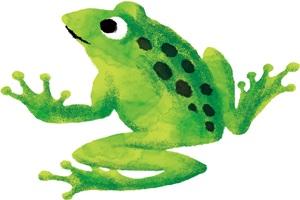 手書き風のカエルのイラスト