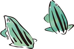 和風のカエルのイラスト