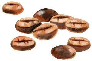 手書き風のコーヒー豆のイラスト