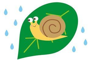 雨とカタツムリのイラスト
